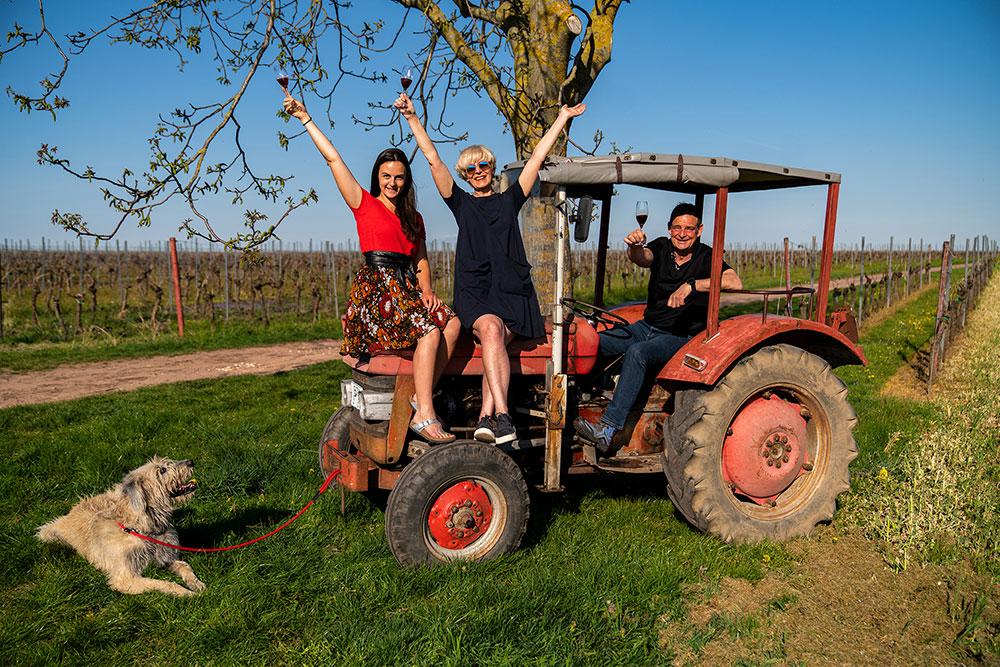 Impressionen aus dem Weingut Ökonomierat Lind